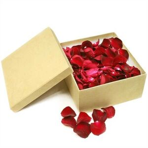 Confetti with rose petals